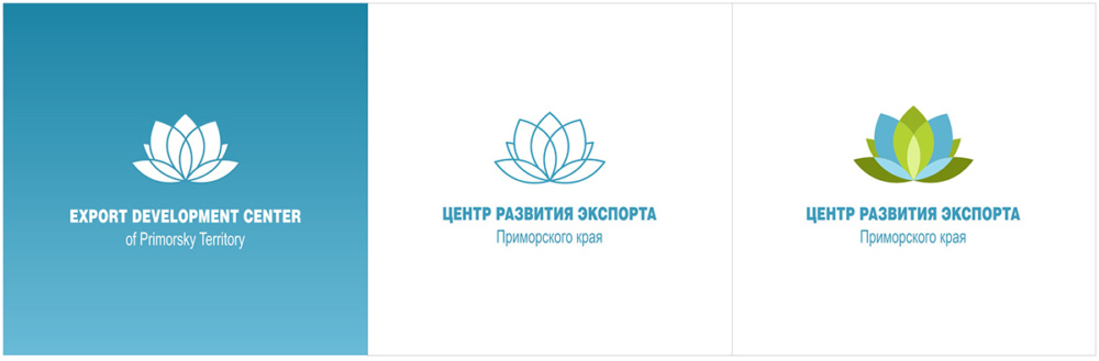 Эмблема центра, 2013 г.